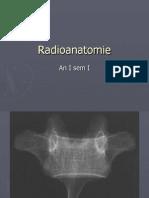 Curs Anatomie 05 - Radioanatomie - 07.X.2013