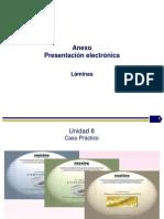 Proceso Auditoria Ambiental PNAA-PROFEPA_2013.pps