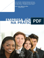 Empresa Junior Pratica