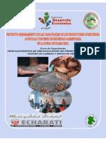 Guia Metodologica Fotalecimiento Organizacional_foda