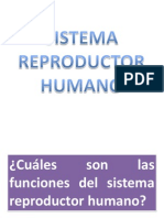 CLASE DE SISTEMA REPRODUCTOR HUMANO