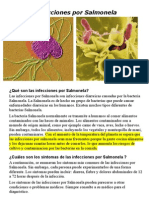 salmonela infecciones