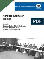 Bp0bn.aerobic.granular.sludge.water.and.Environmental.management.series