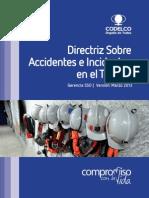 Directriz Accidentes