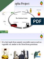 Projeto Biodiesel Jatropha