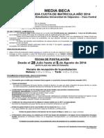 Beca de Matricula Segundo Semestre 2014 (1)