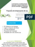 Anteproyecto Ley Probosque (Presentación)