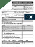 Ficha Monitoreo Inicial, Primaria y Secundaria