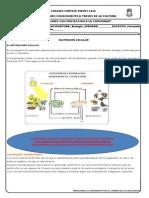 Guia Para Ac1 Biologia Nutricion