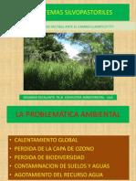 Los Sistemas Silvopastoriles.prof.Eduardo Escalante