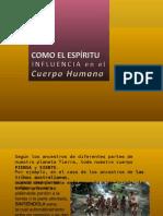 Biodescodificación Biopsicologica
