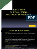 Fca Zayra