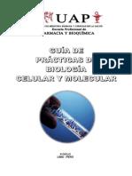 Guiadepracticas Biologiacelularymolecular 130923170708 Phpapp02