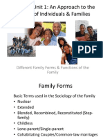 different family forms  functions of the family