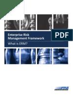 New Age Enterprise Risk Management