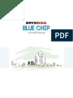 IT Bluechip
