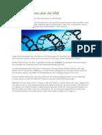 Neue Erkenntnisse über die DNA