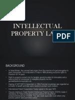 Intellectual Property Laws