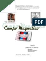 Campo Magnetico - Yonatan Perez - Fisica II