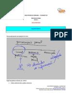 IntOABSemanal ProcessoPenal Aula01 FlavioCardoso MATERIAL de APOIO AULA 01