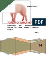 Proyecto de Cerdos Tamayo