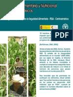 Seguridad Alimentaria y Nutricional Conceptosbasicos