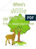 Willie Story