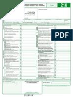 formulario declaracion 210-2014.pdf