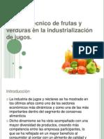 Proceso Técnico de Frutas y Verduras en La Producción de Jugos