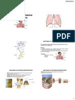 Sistema Respiratrio 1 e 2