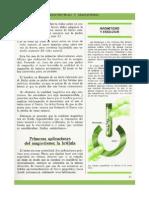Ficha - Electricidad y Magnetismo - (39)