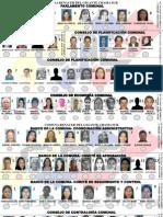 TARJETON ELECCIONES PARLAMENTO (DEFINITIVO).pptx