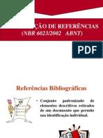 ABNT Referencias Bibliograficas 1 (1)