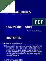 144_OBLIGACIONES_PROPETER_REM_-_2010