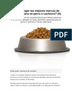 Ómo Escoger Las Mejores Marcas de Alimento Para Mi Perro o Cachorro