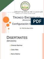 Tronco Encefálico Conf Interna 2014