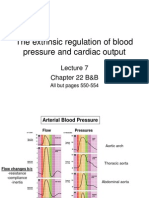 Lecture 7 - Regulation of Blood Pressure