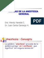 Teorias de La Anestesia General