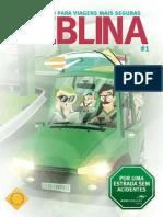 Guia para dirigir na Neblina.pdf