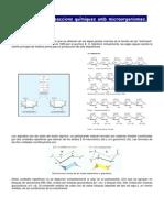 Biotecnologia - Dossier