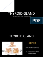Thyroid Gland Slides
