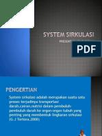 System Sirkulasi