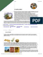 Dossier Aroma-zone Henné Et Poudres Végétales Colorantes