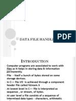 Data File Handling Points