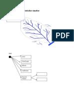 Rețeaua caracteristicilor râurilor