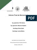 2013.12.11. Informe Final de Mercavereda