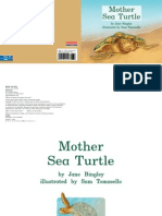 All About Mother Sea Turtle