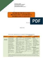 Matriz Técnicas Para Recolección y Análisis de La Información Cualitativa