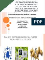 1.Procesamiento y Comercializacion de Bolsa Biodegradable a Partir