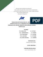 Produccion de Frutales Bajo El Enfoque Agroecologico (Domingo 24 Marzo)